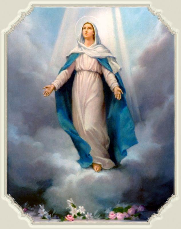 ++++Fête de L'Assomption de la Très Sainte Vierge Marie++++ 48751178-1