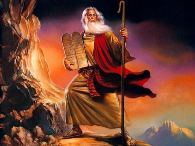 Moise 11