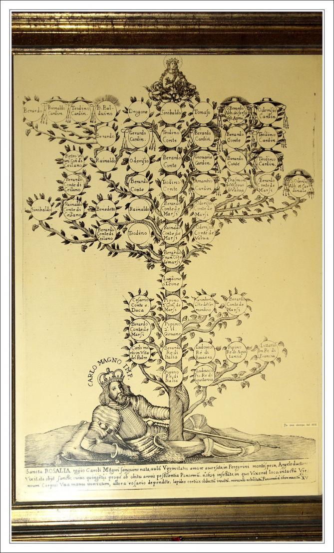 Palerme arbregene 1739