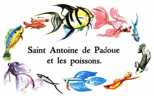 St antoine et les poissons