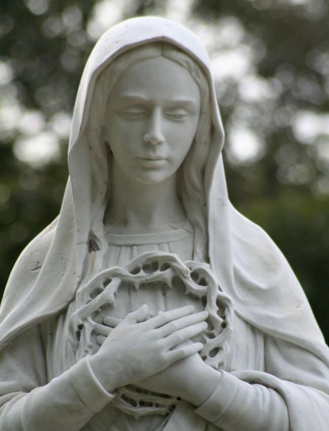 Vierge marie priere couronne d epines de jesus