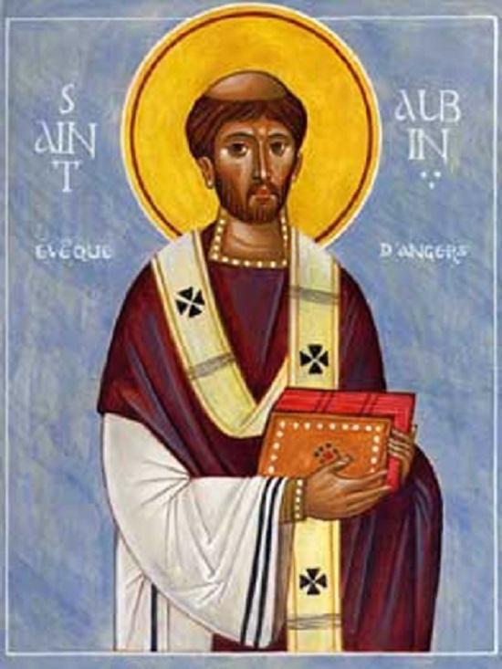 Saints et Saintes du jour - Page 15 Aubin.2